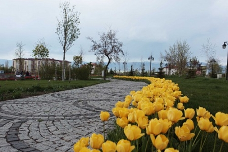 Erzurum'da buraya giden var mı! 2