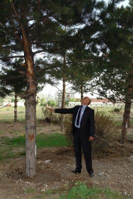 Erzurum bir parka daha kavuşuyor! 2