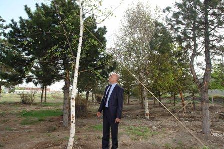 Erzurum bir parka daha kavuşuyor! 3