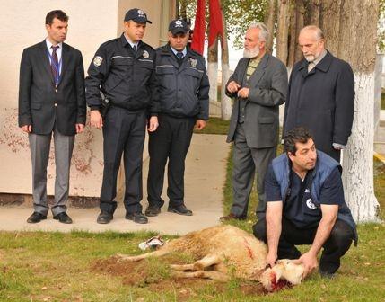 Erzurum polisine 2011 desteği 6