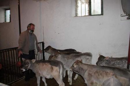 Taşıma su ile hayvancılık! 4