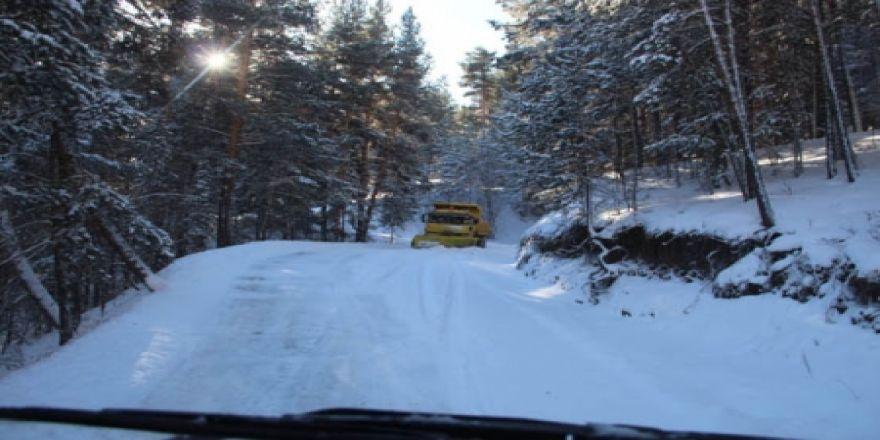 Erzurum'da kar yolları kapadı