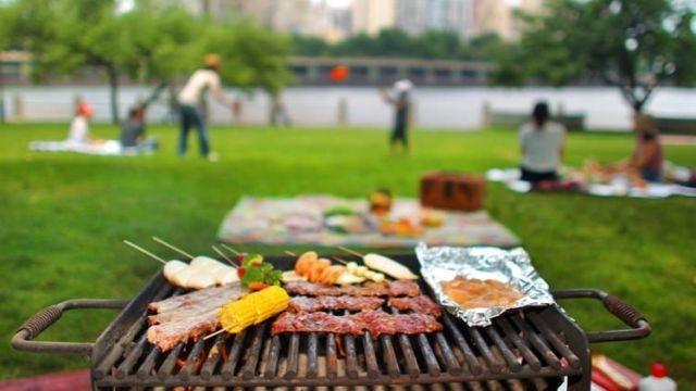 Erzurum'un piknik alanları 1