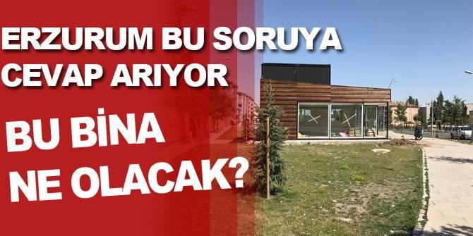 Erzurum Bu soruya cevap arıyor!