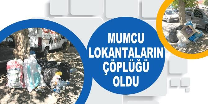 Belediyeler Mumcu'yu temizlemiyor!