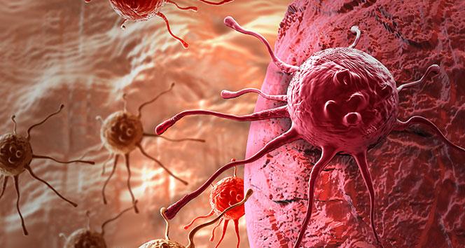 Tiroid kanseri vakalarında artış