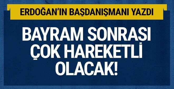Erdoğan'ın danışmanı yazdı