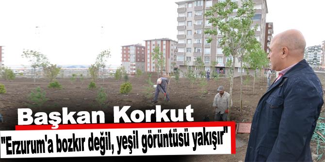 """""""Erzurum'a bozkır değil, yeşil görüntüsü yakışır"""""""