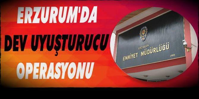Erzurum ve Bingöl'da 9 kişiden 4'dü tutuklandı