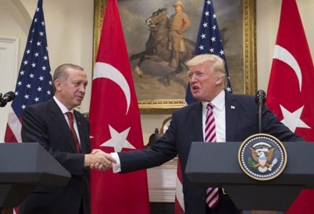 Trump, Erdoğan'dan özür diledi mi dilemedi mi? Kalın'dan son açıklama