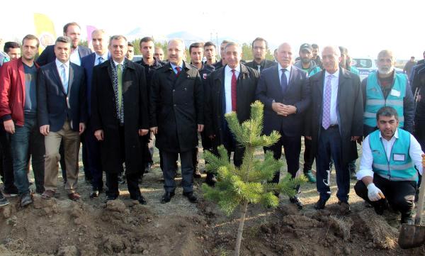 Erzurum'da Cezalarını Fidan Dikerek Ödüyorlar