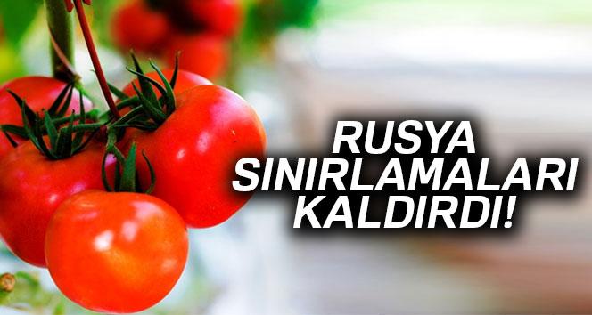 Rusya, Türk domatesine uygulanan sınırlamaları kaldırdı