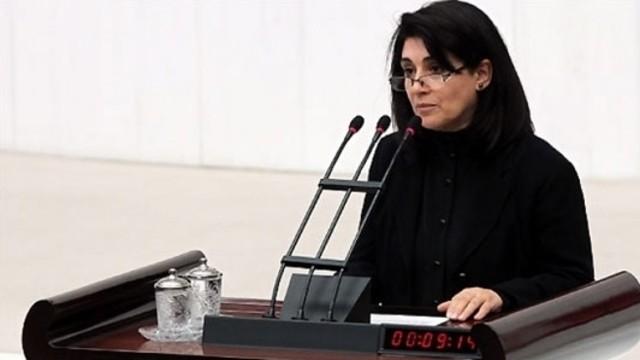 HDP'li Zana'nın vekilliğinin düşürülmesine CHP'den destek