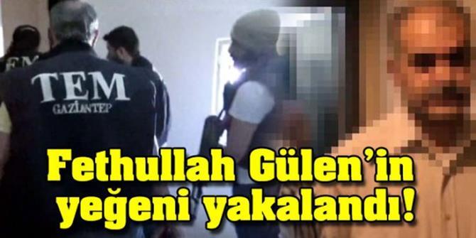 Örgüt Elebaşı Gülen'in Yeğeni Yakalandı