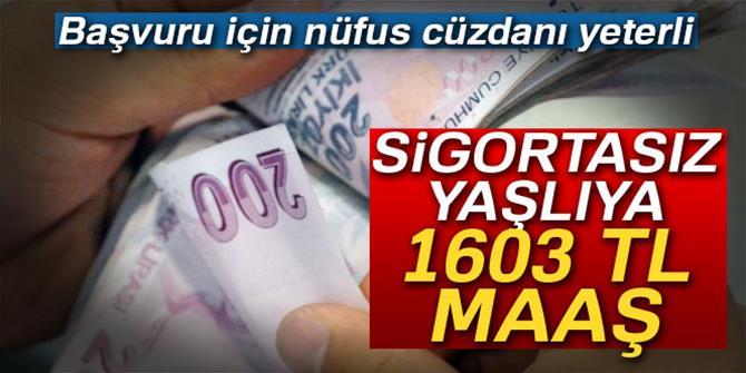 Sigortasız yaşlılara 1603 TL maaş