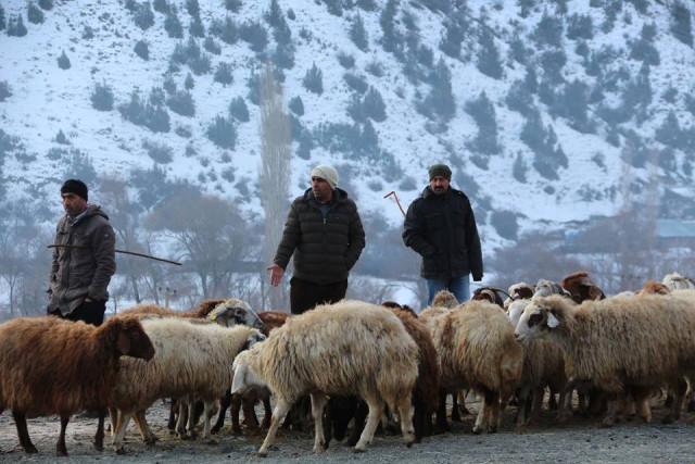 Akşarlılar Kapalı Hayvan Pazarı İstedi