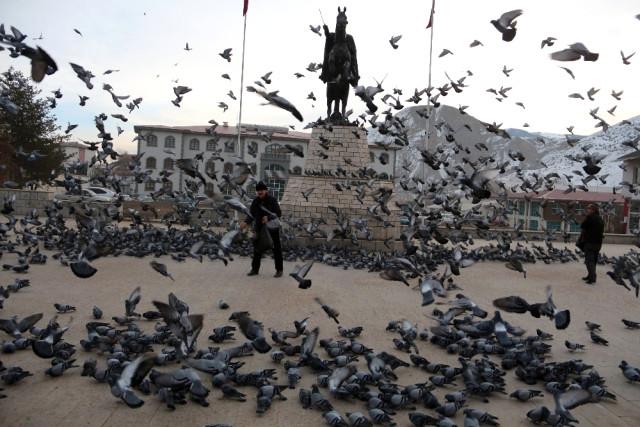 Soğuk Havada Yemsiz Kalan Güvercinleri Esnaf Doyuruyor