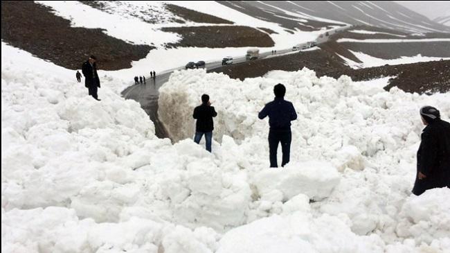 Erzurum'da 3 otomobil çığ altında kaldı