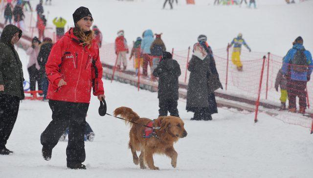 Jandarmanın Arama Köpeği Gurbet, Palandöken'in Koruyucusu