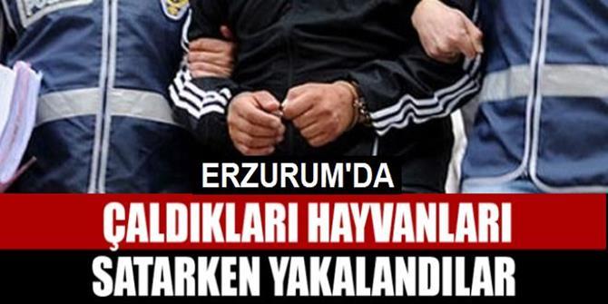 Erzurum'da 3 şüpheli yakalandı