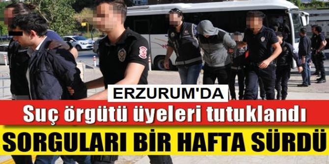 Suç Örgütü Zanlılarına Tutuklama