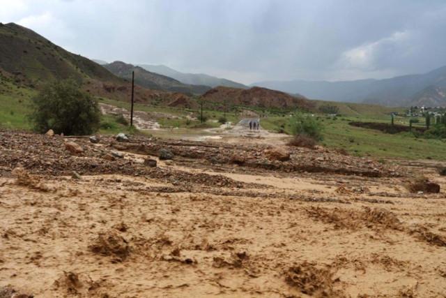 Sel Suları Karayolunu Trafiğe Kapattı