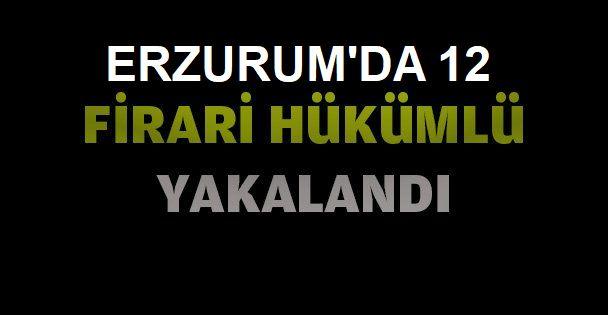 Erzurum'da firari 12 hükümlü yakalandı