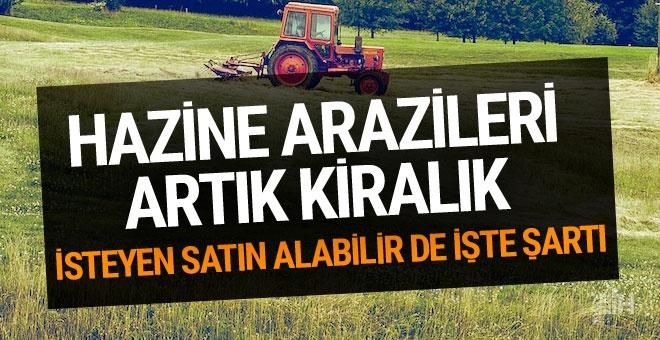 Hazine arazileri çiftçiye kiralanacak