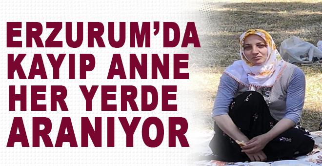Erzurum'da kayıp anne aranıyor