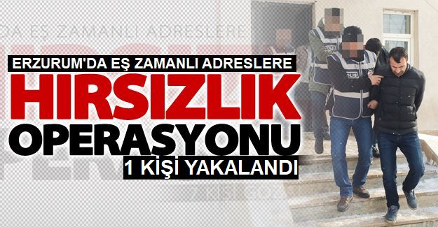 Erzurum'da Hırsızlık Operasyonu