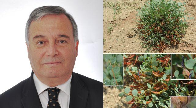 Prof. Dr. İhsan Çalış'ın adı bitkiye verildi