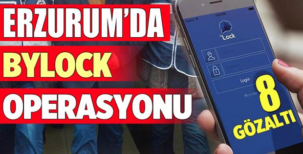 Erzurum merkezli 3 ilde FETÖ/PDY operasyonu: 8 gözaltı