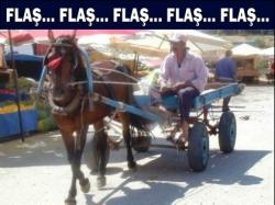 At arabaları trafiğe çıkmıyacak
