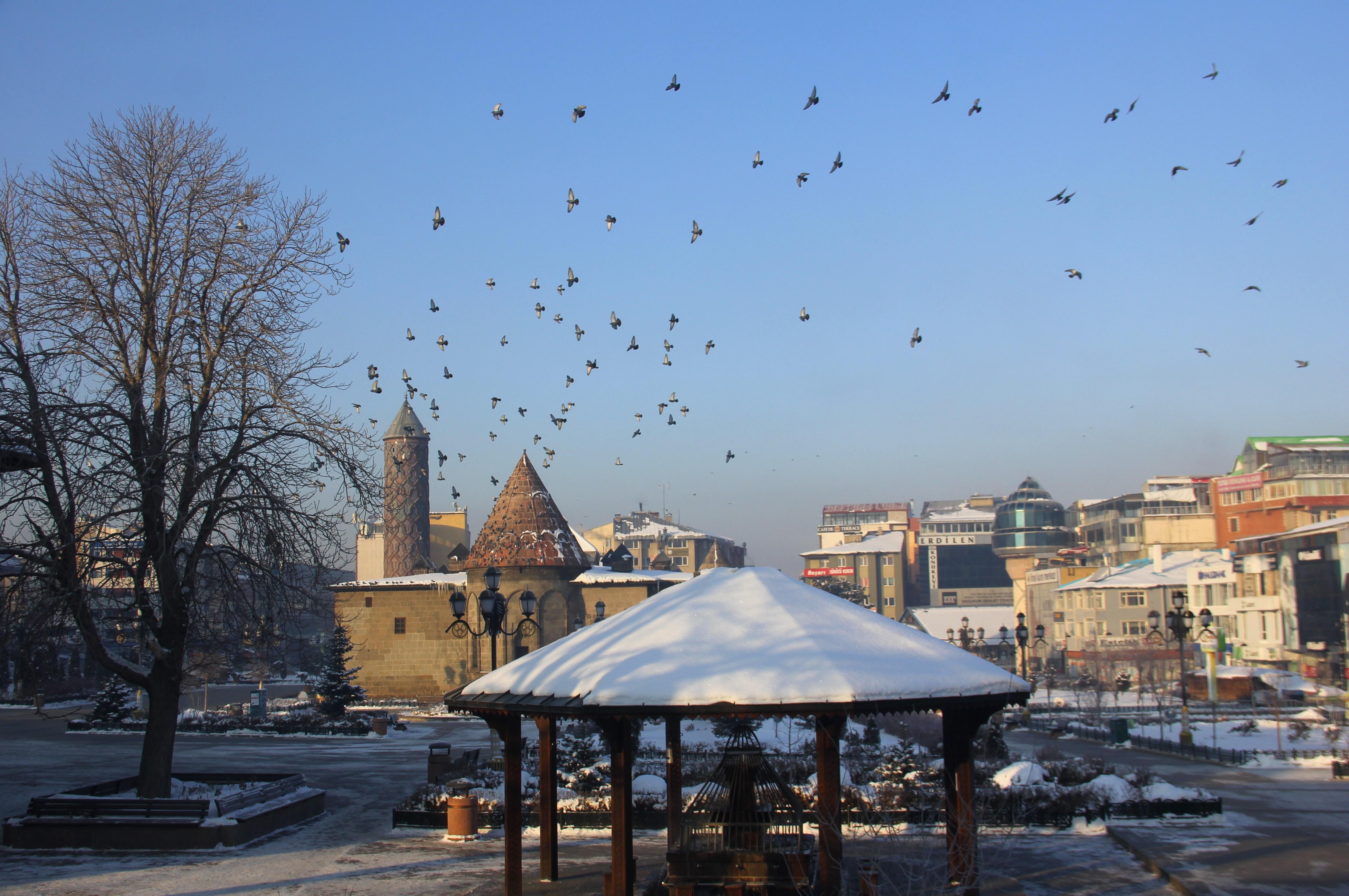 Doğu Anadolu'da Sibirya soğukları: Göle eksi 29 derece