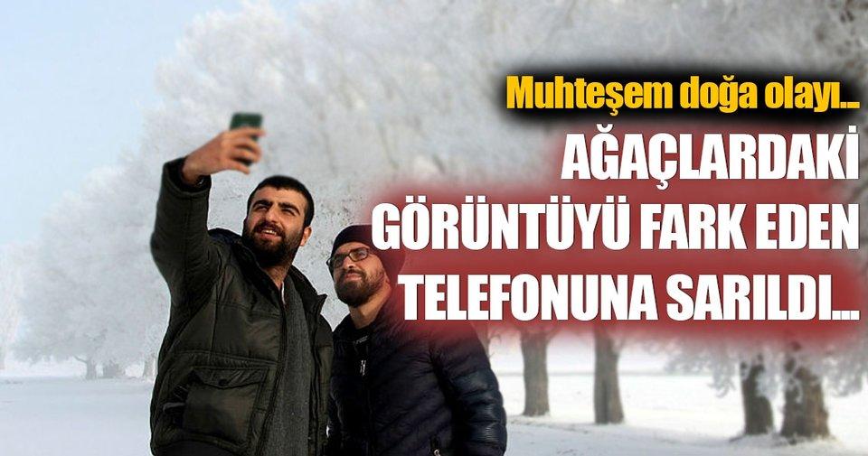 Erzurum'da kartpostallık kırağı manzaraları