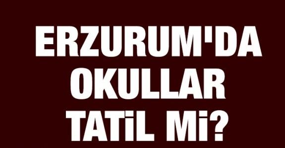 Erzurum'da okullar tatil mi?