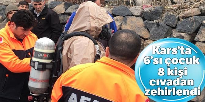 Kars'ta 6'sı çocuk 8 kişi cıvadan zehirlendi