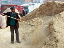 Üç ülke Erzurum'dan saman alıyor