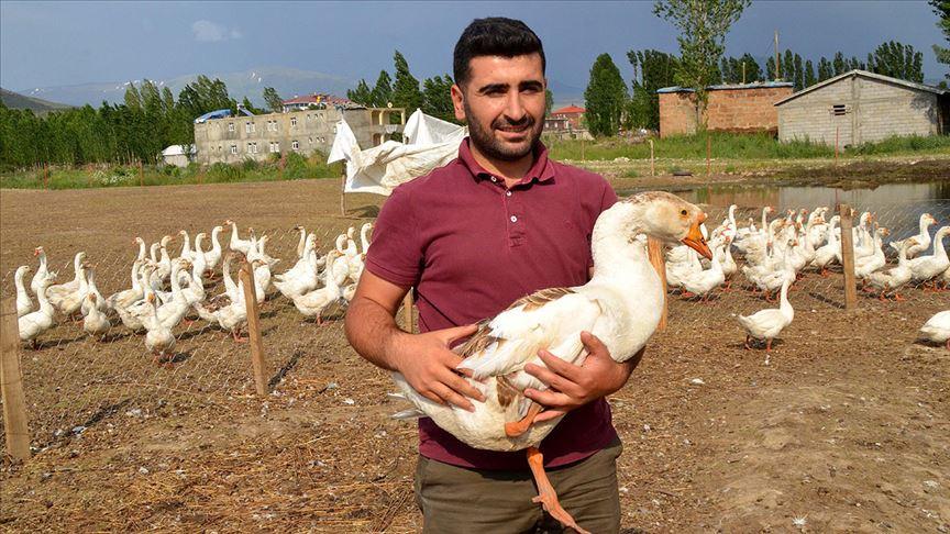 Kaz çiftliği hayalini devlet desteğiyle gerçekleştirdi