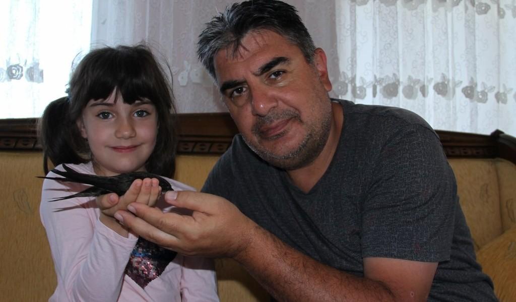 Ebabil kuşu Erzurumlu vatandaşın evine sığındı