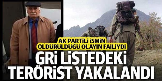 Gri kategorideki terörist Erzurum'da yakalandı!