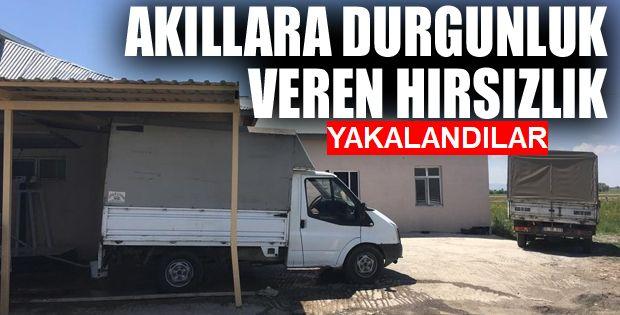 Erzurum'da Çalıştığı iş yerinden 100 bin liralık peynir çaldı