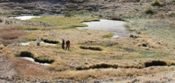 Erzurum'da yeni bir yüzen ada