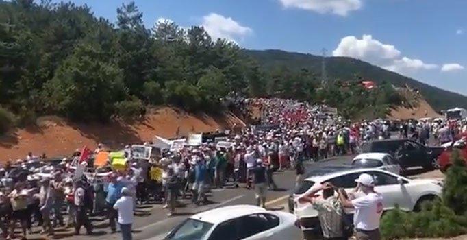 Binlerce kişi Kaz Dağları için yürüdü