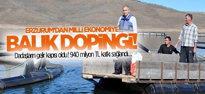 Erzurum'dan milli ekonomiye balık dopingi