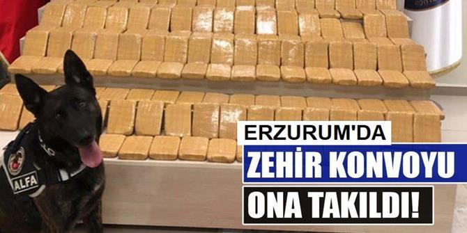 Erzurum'da 61,5 kilogram eroin ele geçirildi