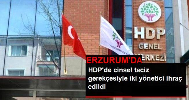 Tekman, HDP'de cinsel taciz ihracı
