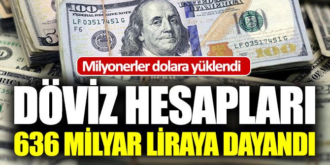 Türkiye'deki milyonerler dolara yüklendi