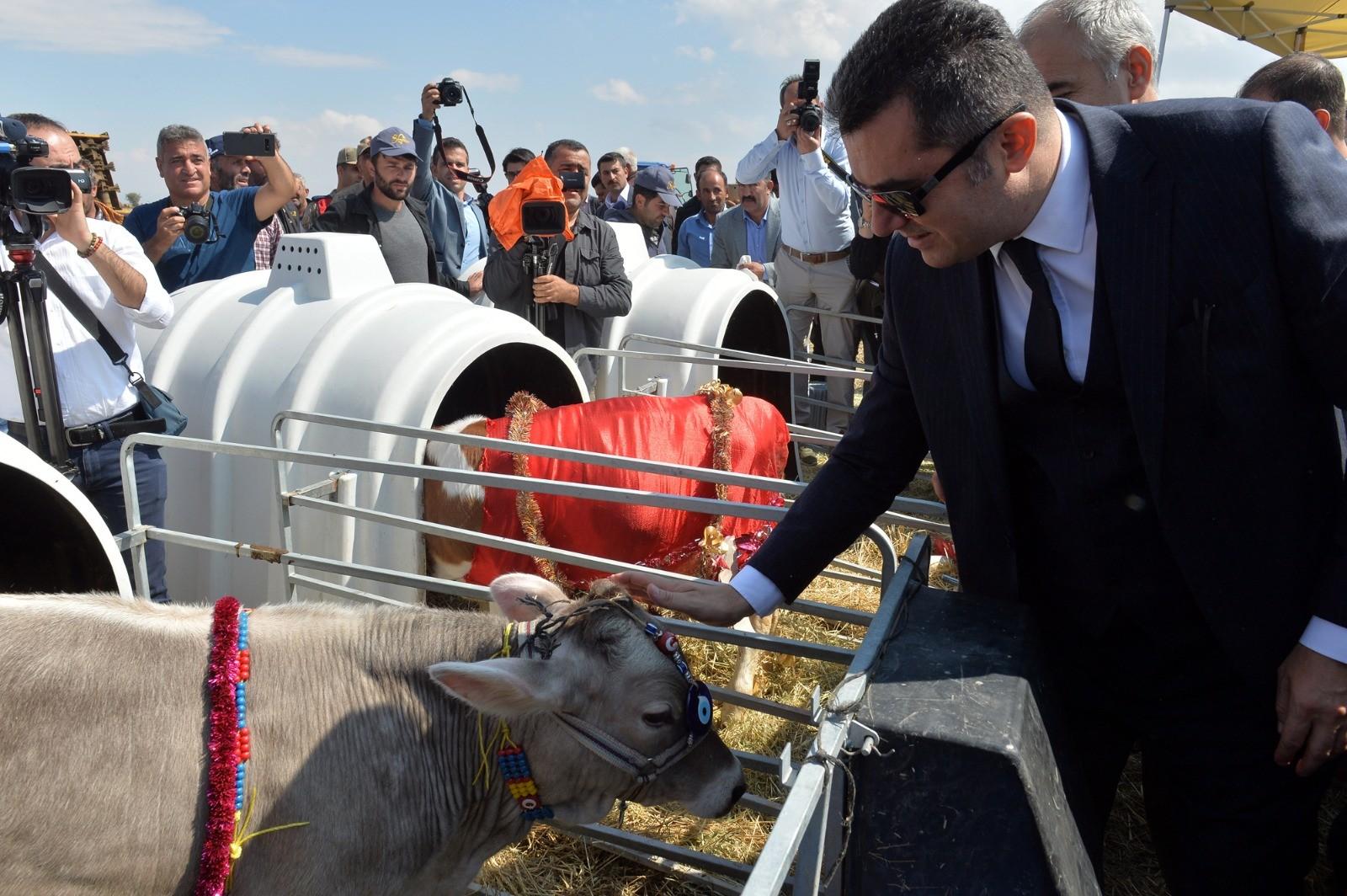 Erzurum'da Tarla Günü Şenlikleri düzenlendi