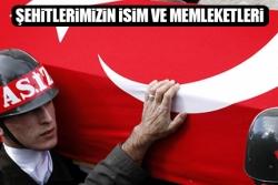 Erdoğan: Dik durmalıyız